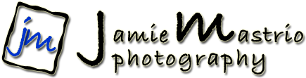 Jamie Mastrio Photography - Serving Wilbraham, Springfield, East Longmeadow, Longmeadow, Hampden, Palmer, MA, CT and beyond!